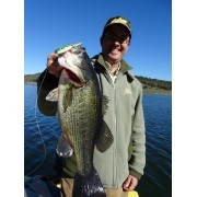 Señuelos Salmo Sting 9cm Suspending Spanish Black Bass